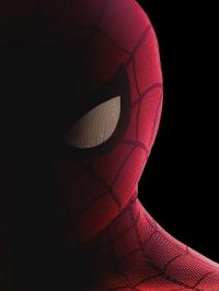 Spider-Man: Homecoming 3